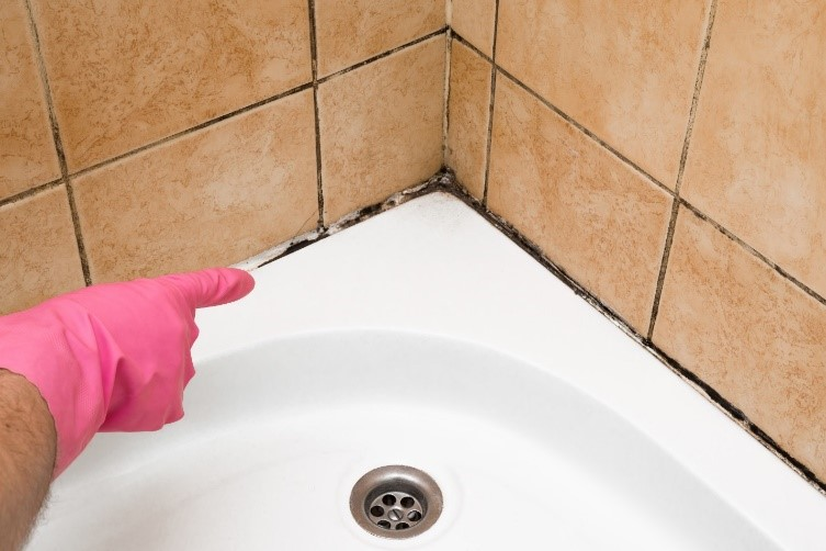 Bathroom Mold & Mildew